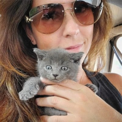elle with a tiny grey kitten